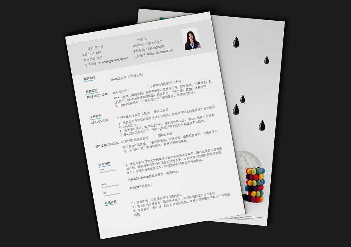 求职宝简历模板丨QCH017-求职宝简历