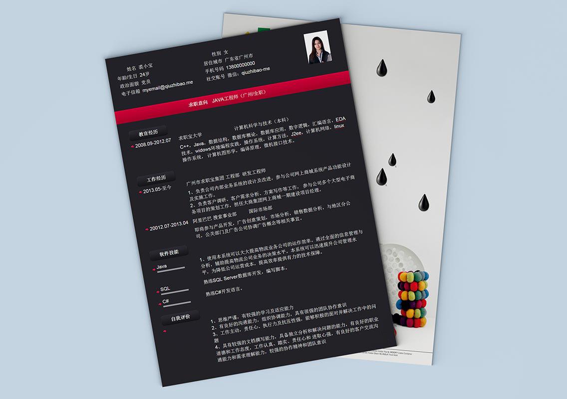求职宝简历模板丨QCH018-求职宝简历