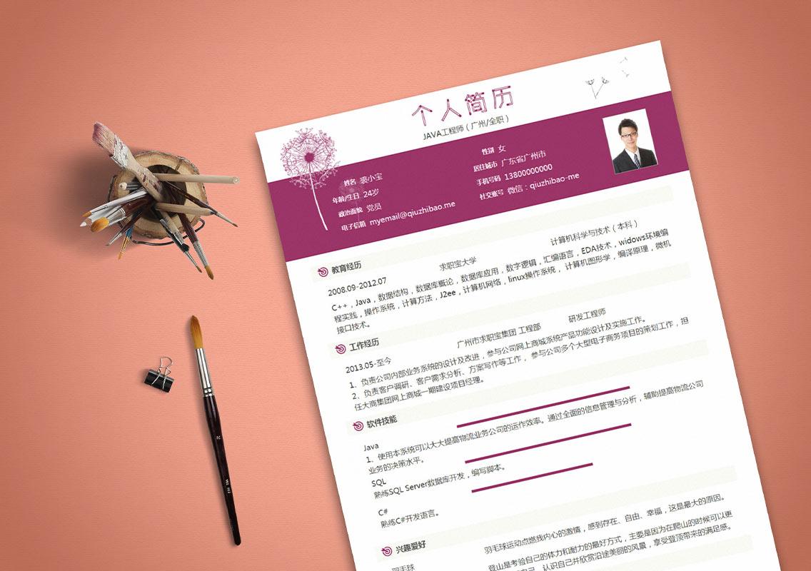 求职宝简历模板丨QNH089-求职宝简历