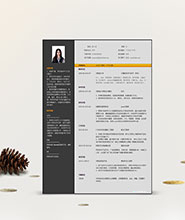 QCH024&nbsp创意通用简历模板
