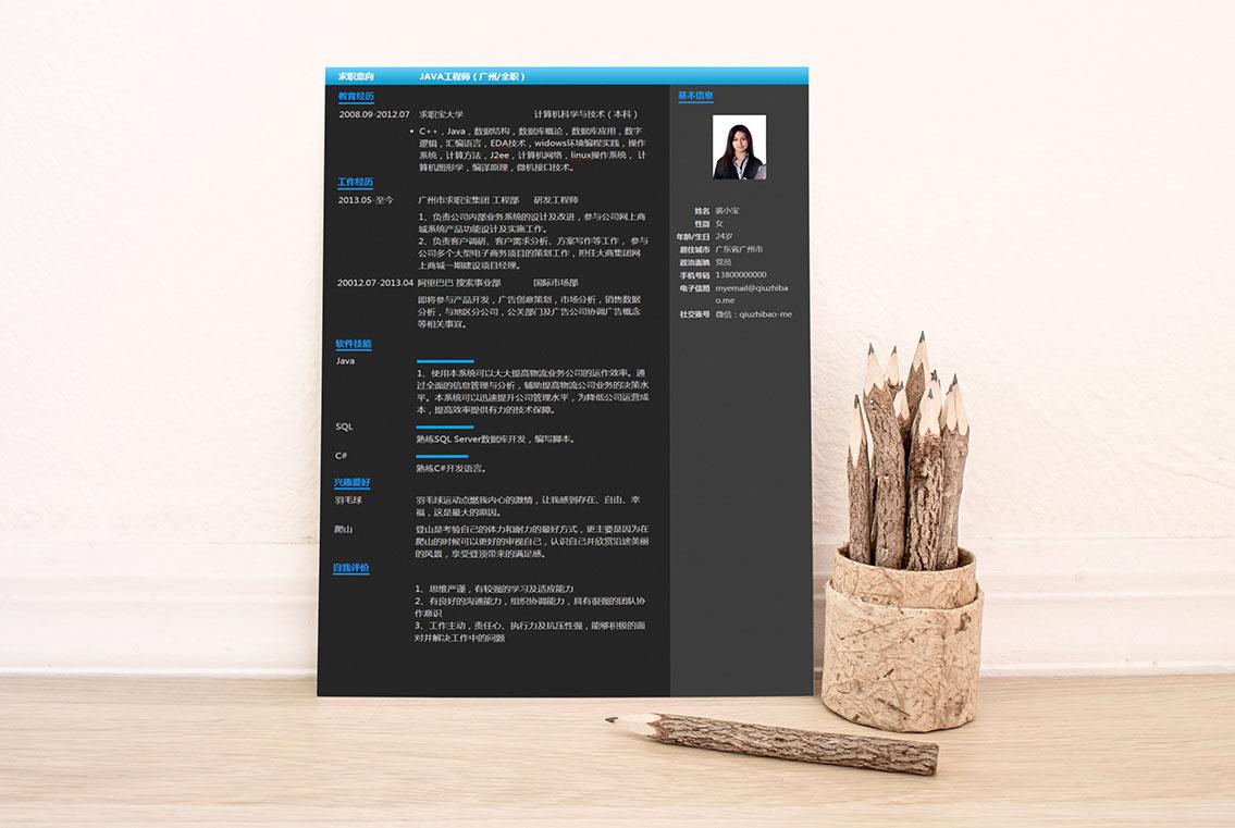 求职宝简历模板丨QCH028-求职宝简历